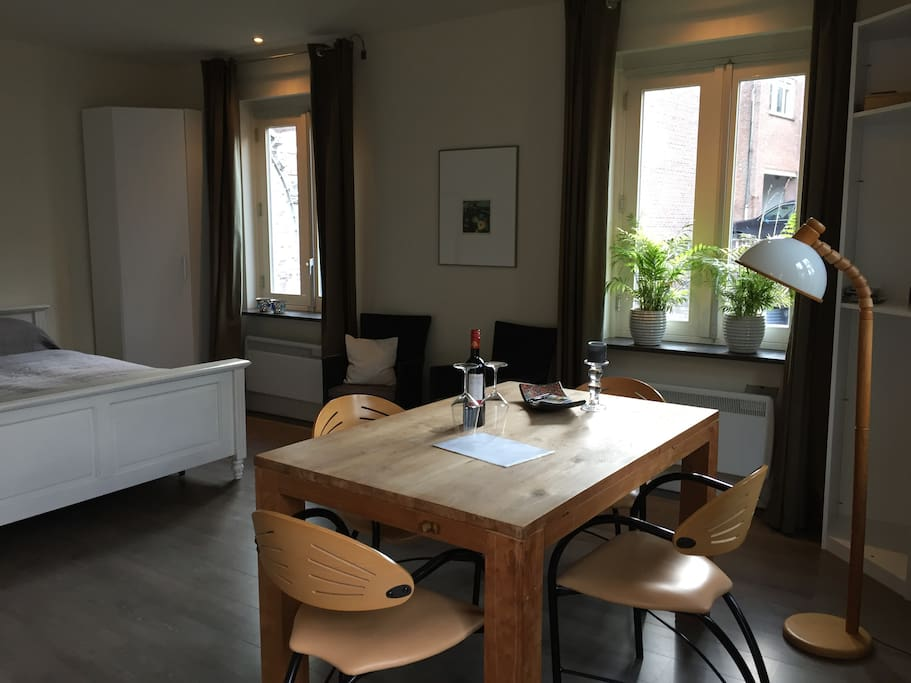 studio met leefruimte, tweepersoons bed en keukenblok