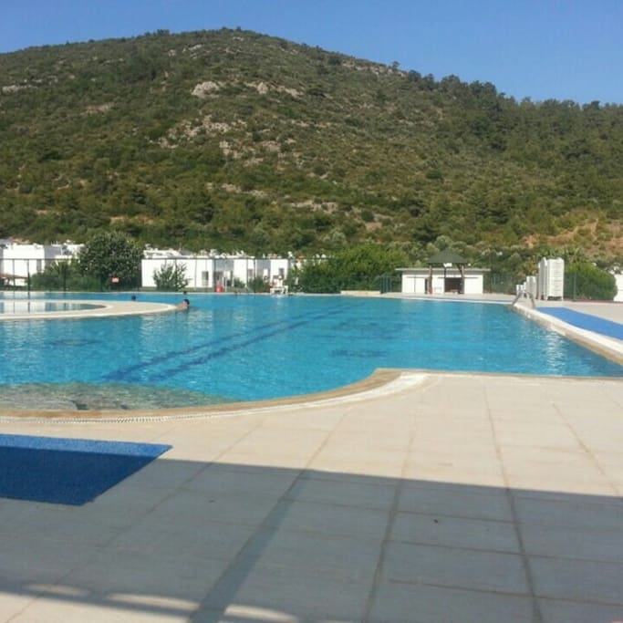 the swimming pool ıs 30 seconds  away from the house