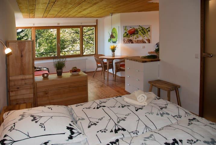 Birkensicht 2 im Schwarzwald Ferienappartement Ost - Herrischried - Apartment