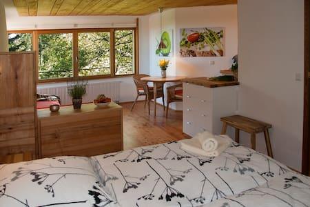 Birkensicht 2 im Schwarzwald Ferienappartement Ost - Herrischried - Wohnung