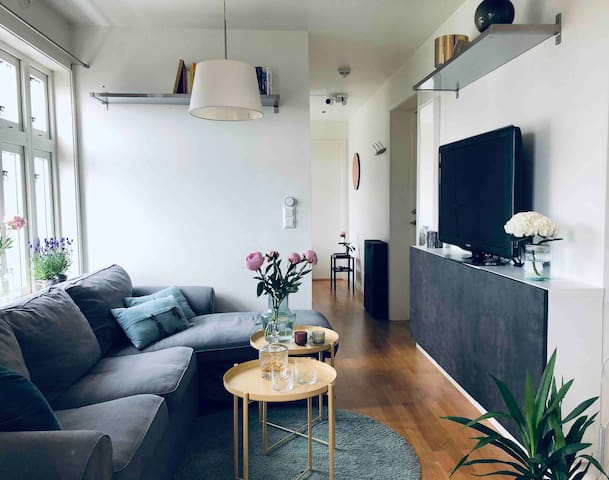Lovely apartment close to city center free parking