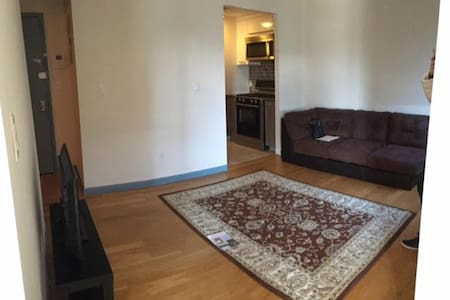 Furnished Junior One Bed & Balcony - Brooklyn - Apartment