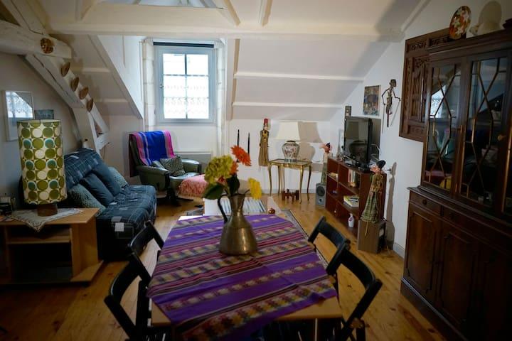 Bel appartement ancien de charme, bien situé - La Rochelle - Apartment