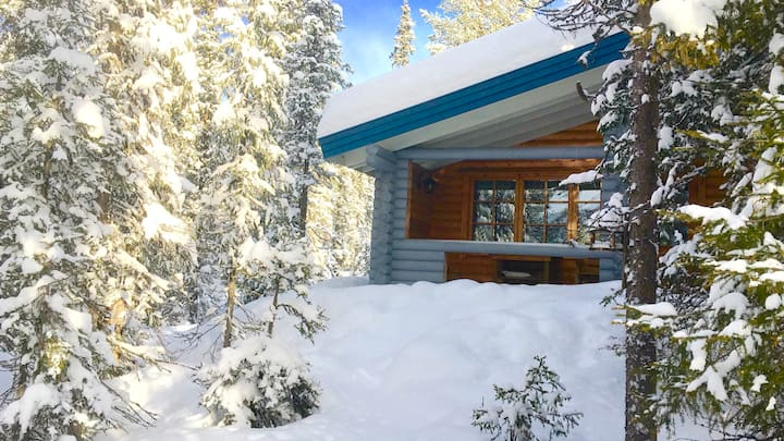 A Log cabin in the National Forest
