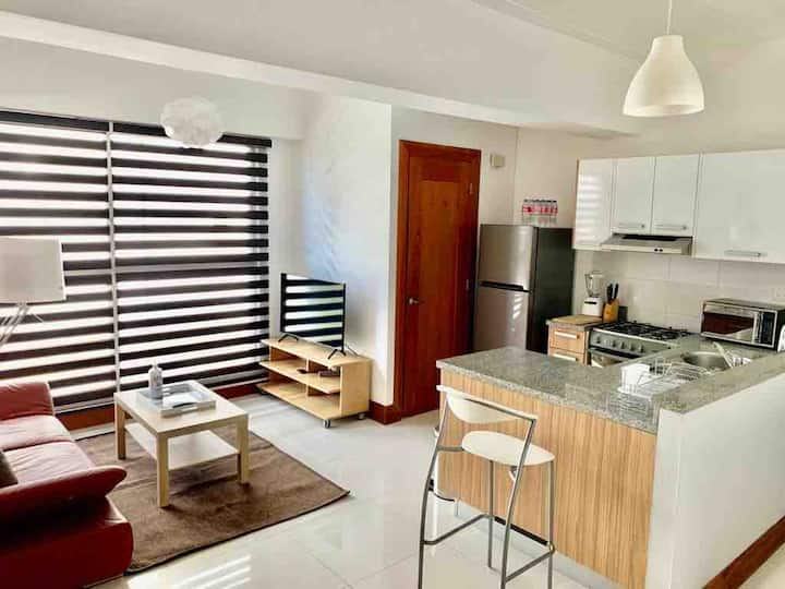 Beautiful furnished apt for rent downtown Sto Dgo