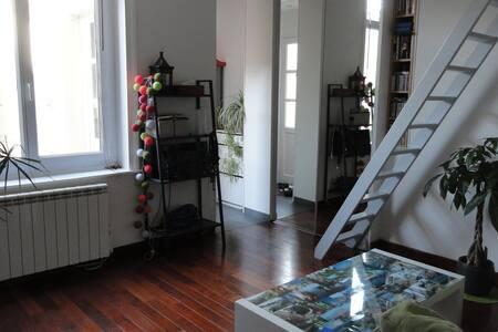 T1 lumineux avec cour privée quartier Montebello - Lilla - Appartamento