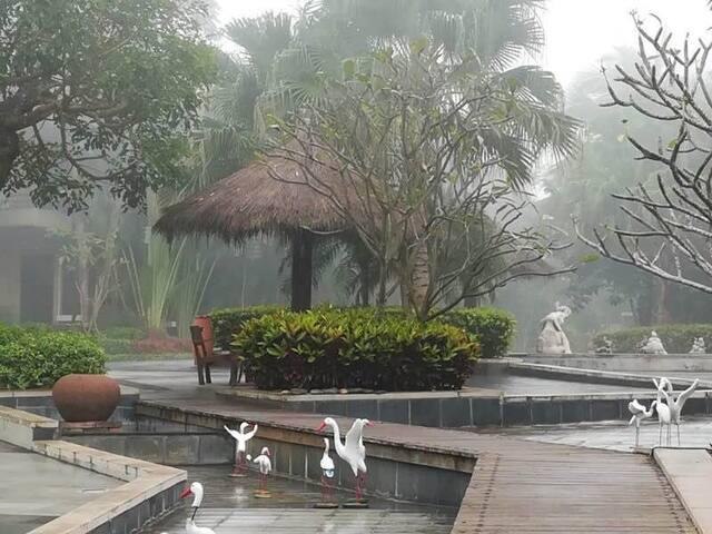 雨后小区观景台