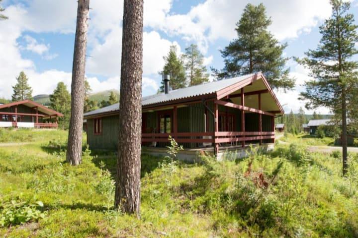 Cozy cottage - Great location, Sauna & Fireplace!