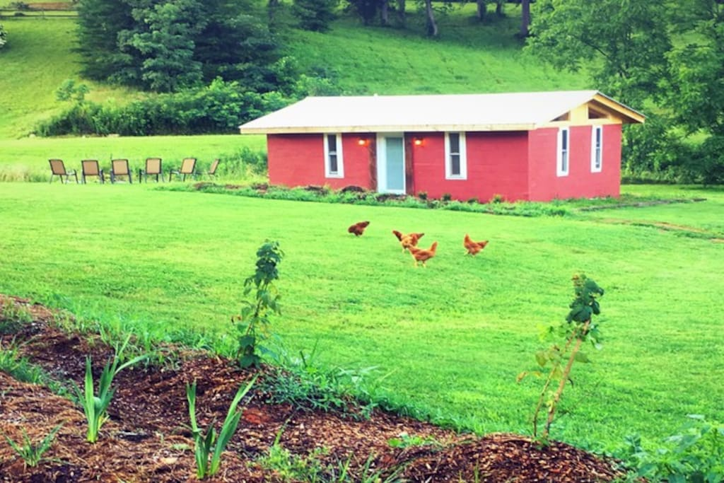 Exterior of cabin shows garden, free ranging chickens and firepit area.