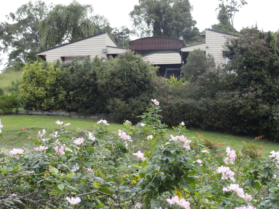Frount view of house
