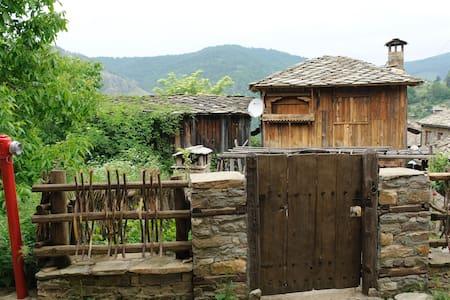 Popov's guest house