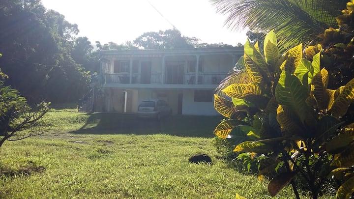 Jolies appartament Plage Grand Anse  Deshaies