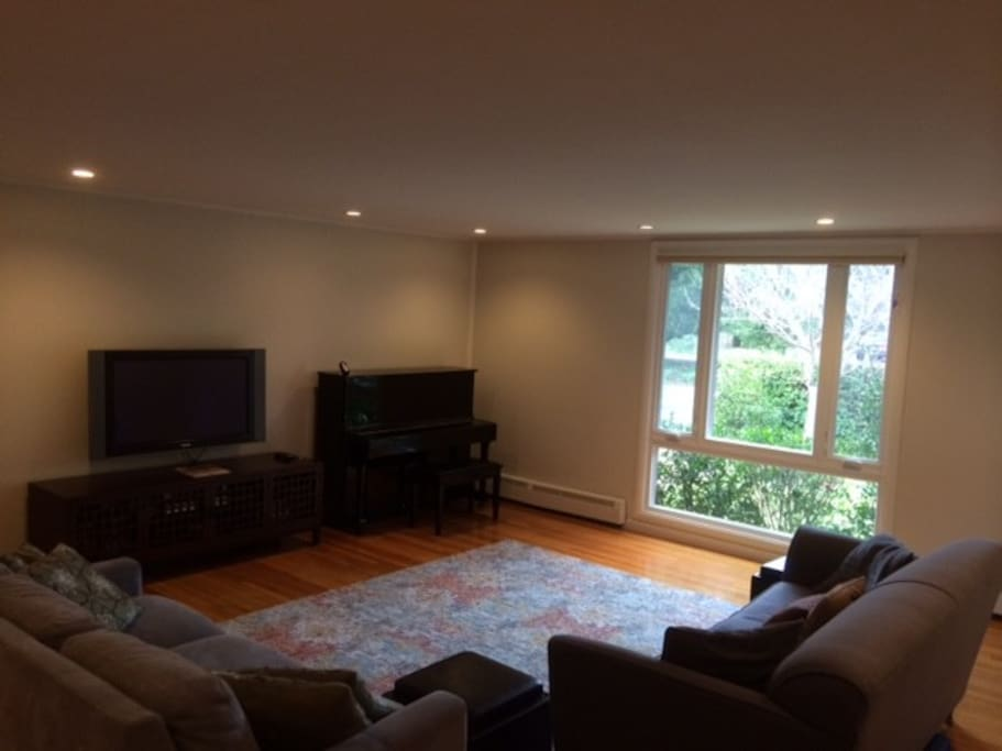 Living / Family Room (includes comfortable full size sofa bed with no bar!)