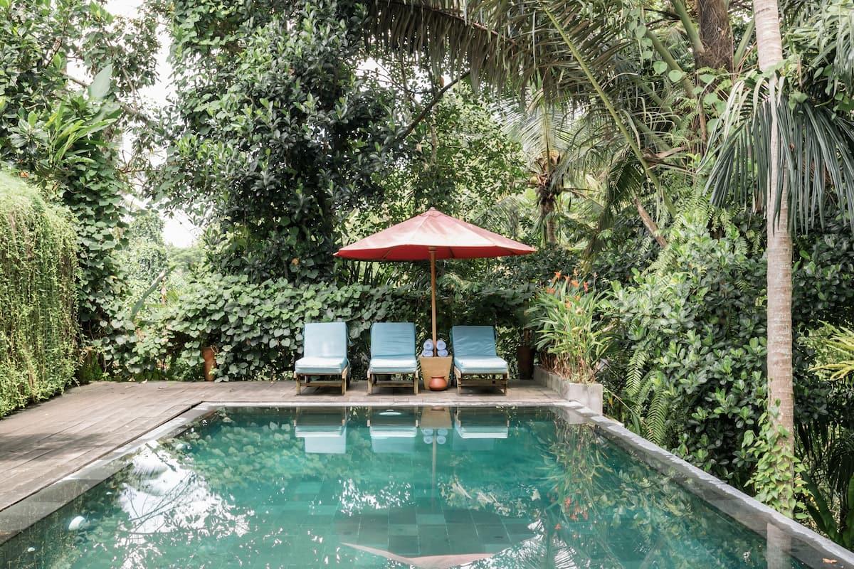 Vibrant Jungle Villa with Infinity Pool