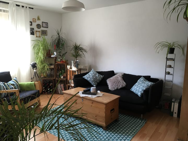 Cosy guestroom in the heart of Mainz -Neustadt-