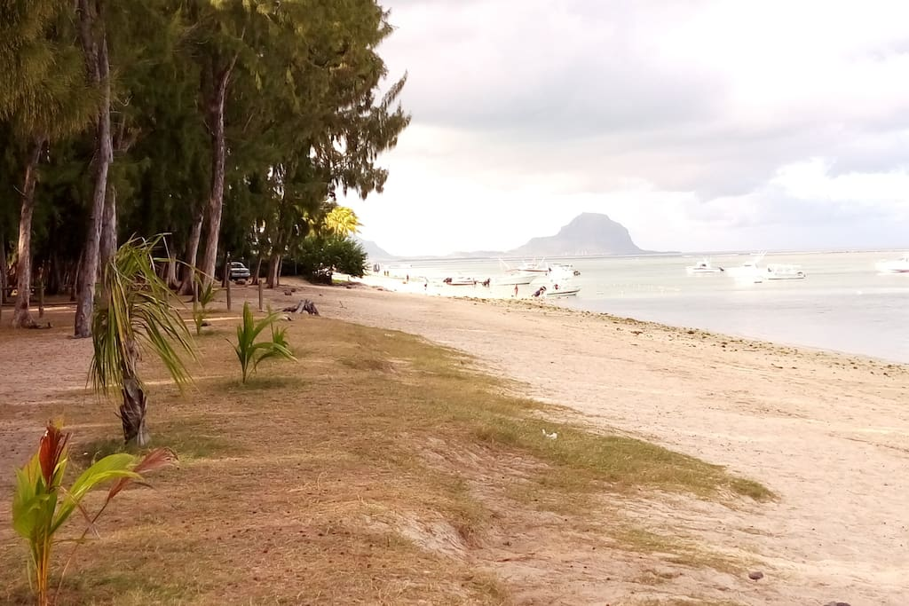 the beach at 100m from the house
