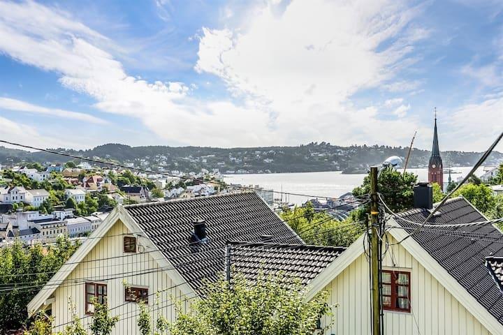 Sentru(SENSITIVE CONTENTS HIDDEN)ær enebolig med koselig hage og sauna - Arendal - House
