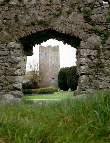 Clomantagh Castle - Freshford - Дом