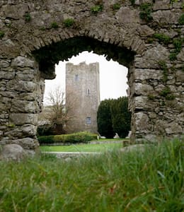 Clomantagh Castle - Freshford - House