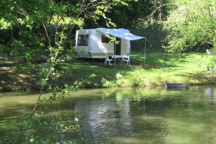 Voyage dans le temps au bord d'un étang
