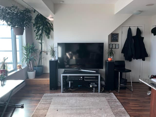 Luxury furnished SUNNY Liberty V. king west loft
