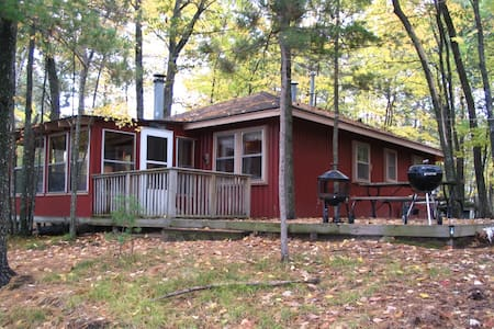 Pet friendly cabin with a/c and fireplace