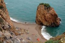 Cala Illa Roja, al costat platja de Pals: 20 minuts amb cotxe de l'apartament.