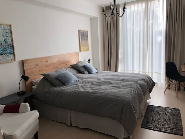 Brand new sunny apartment in Recoleta.