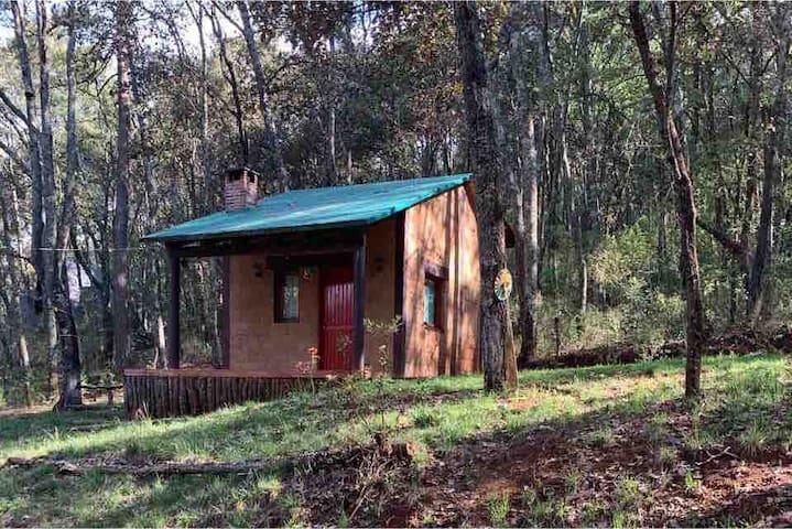 Cabaña Chalet de sillar y madera en bosque mágico
