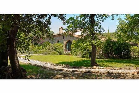 Country House Ginestriccio - Bibbona - Apartment