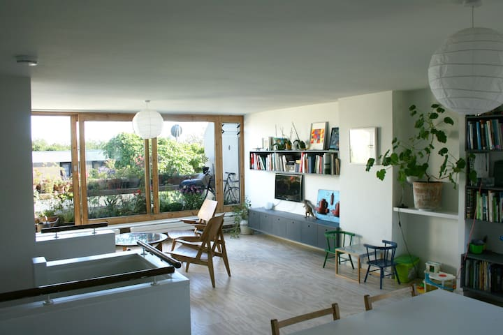 Open plan living space and south facing terrace