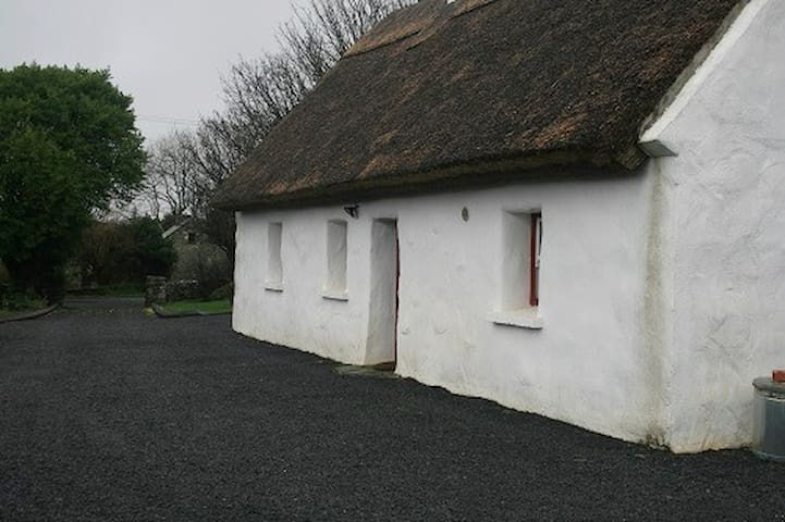 Thatched cottage in the village of Spiddal 368
