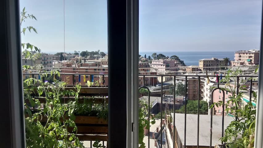 your cozy flat with sea view in Nervi