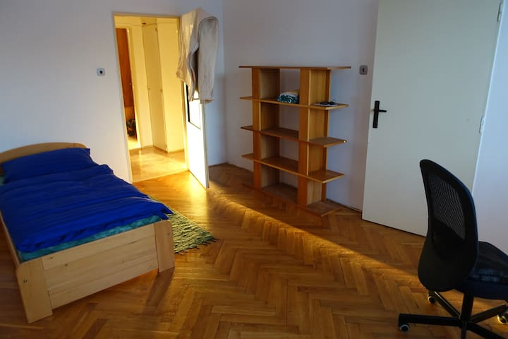 The flat  with international sharing - CZ - Appartement