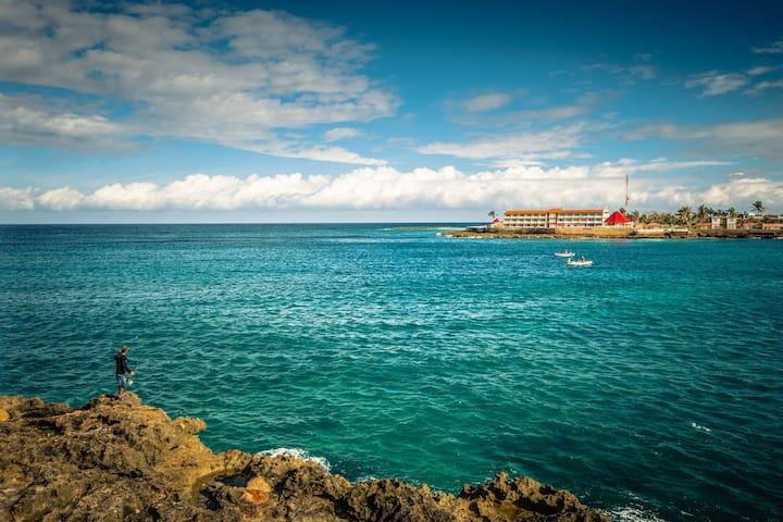 Puntillazo. Ocean View