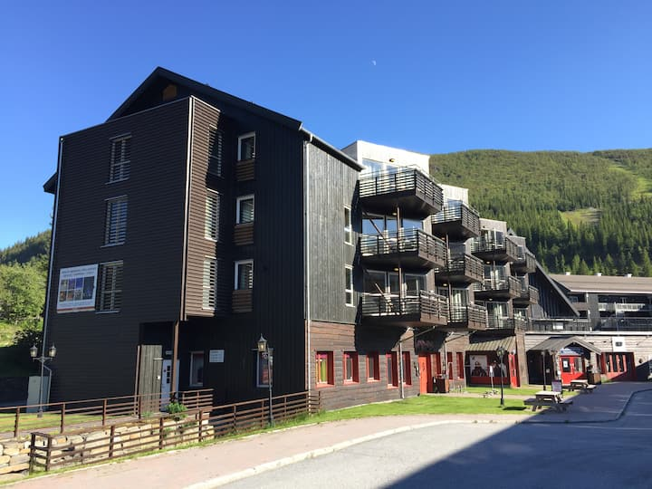 Hemsedal, apartment near river and mountain resort