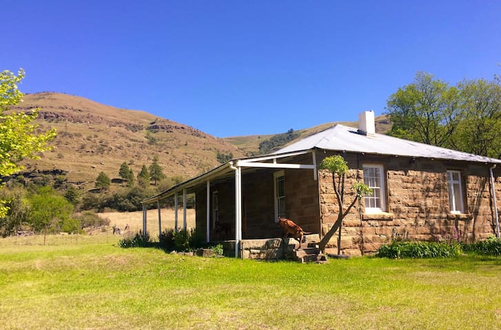 1901- Stone Cottage at Prosperity