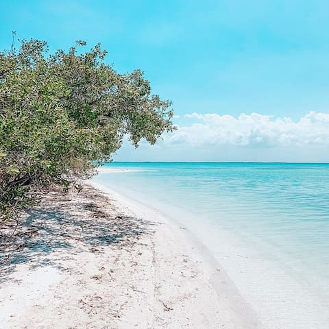 The Best Holbox Experience Available
