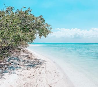 Shankara: The Best Holbox Experience Available H2