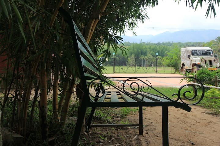 5 bed Jungle cottage in Mudumalai with breakfast