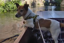 Katy enjoying a punting trip on the River Stour in Canterbury