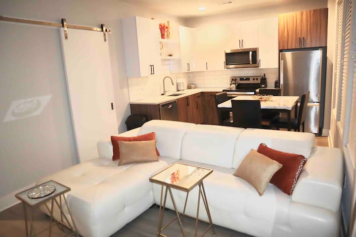 Luxury Cozy Apartment buckhead