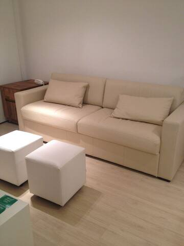 Living room (pull out couch)