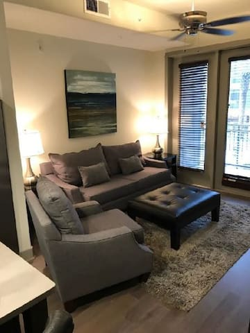 Modern 1 bedroom 1 bath in Downtown Houston
