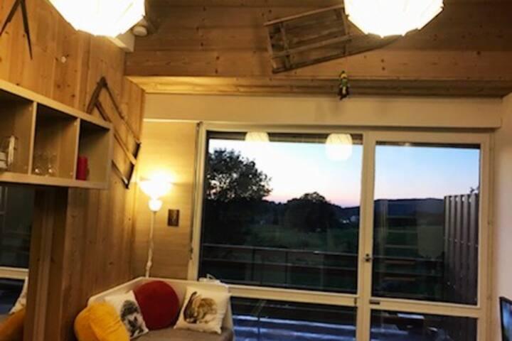 studio cosy ambiance chalet Résidence Le Lacuzon