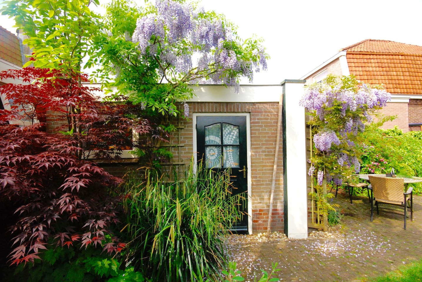 It is a studio apartment in our garden converted for our guests. In the early summer, the beautiful wisteria violet will welcome you at the entrance...