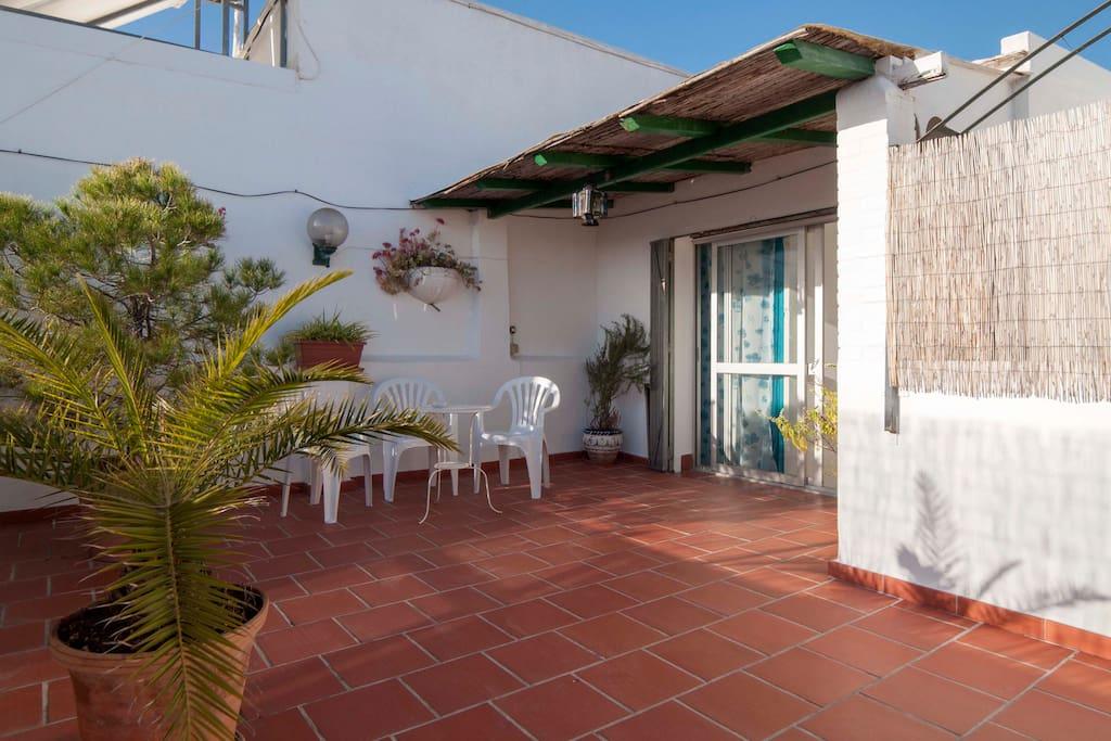 Atico boulevard departamentos en alquiler en san pedro - Atico en marbella ...