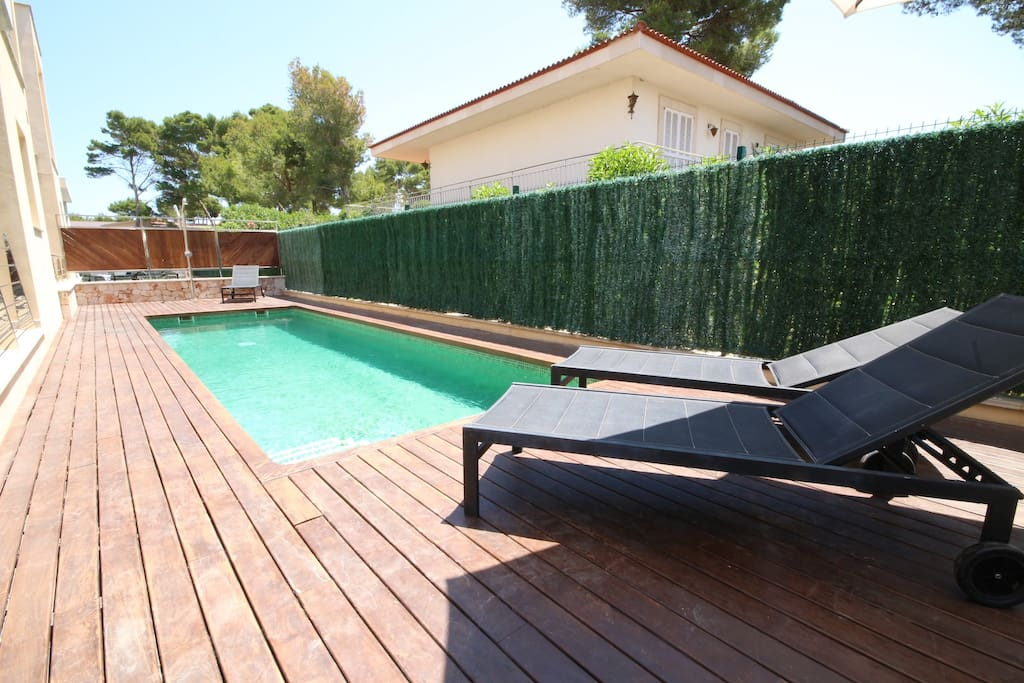 Pool with sun beds area