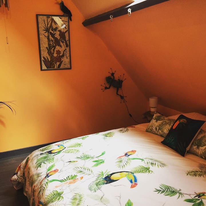 Le Jardin d'Olivier - Chambre Jungle