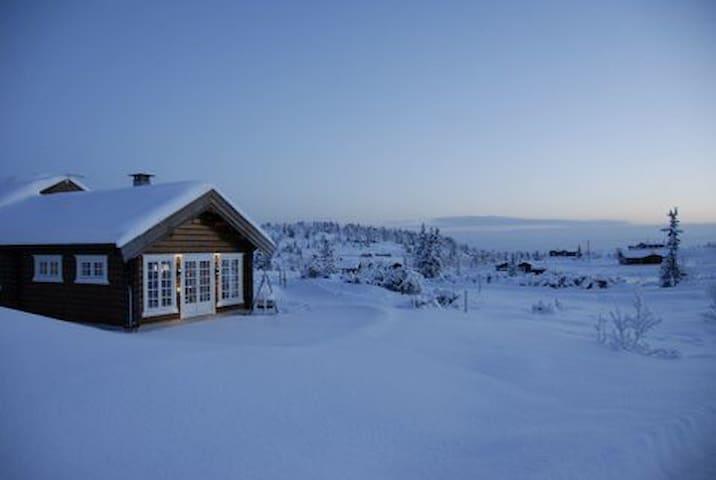 Hytte, Søndre Fjellstølen i Valdres